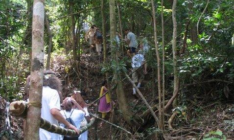15 climbing green peri path