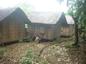 2Posts - Sir Poloy fixing footing of hut #37